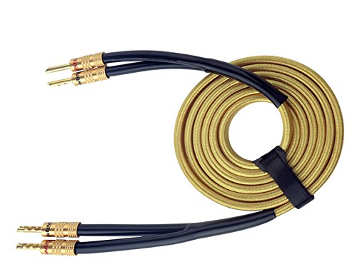 HannLinte Speaker Wire - Speaker Cable(10.0FTx 1) with Gold Plated Sawtooth Banana Plugs-12AWG (OFC)