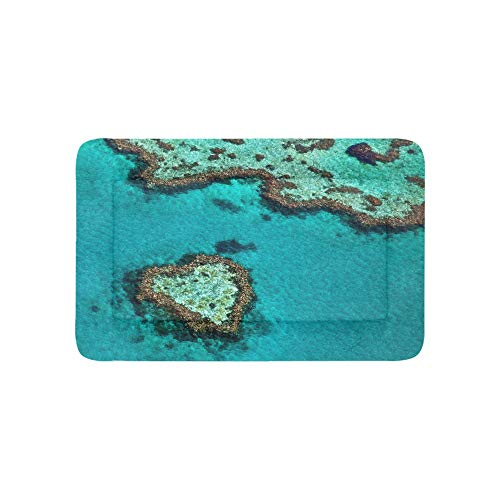 Australia Great Barrier Reef Coral Extra Large Bedding Soft Pet Dog Beds Couch for Puppy and Cats Furniture Mat Cave Pad Cover Cushion Indoor 36x23 Inch (Furniture Outdoor Queensland)