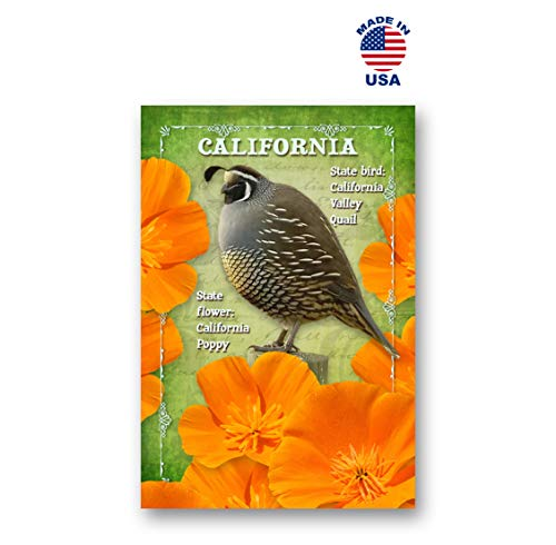 CALIFORNIA BIRD AND FLOWER postcard set of 20 identical postcards. CA state symbols post cards. Made in USA.