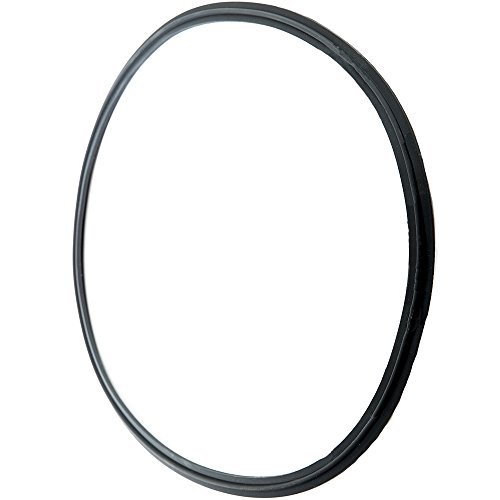 Edge Type Clamp - HFS (R) VITON Rubber Gasket Fits Sanitary Tri Clamp Type Ferrule with Edge (FLANGED) (12IN)
