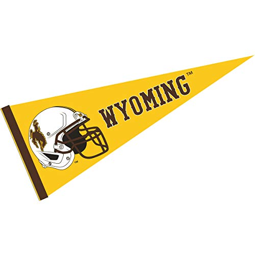 College Flags and Banners Co. Wyoming Cowboys Football Helmet Pennant
