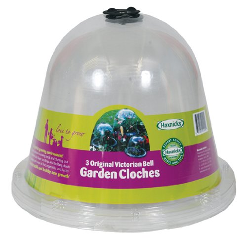 Haxnicks Original Bell Jar Cloches with Ground Pegs (Pack of 3)