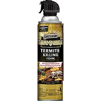 Spectracide Terminate Termite Killing Foam2 (Aerosol)