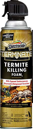 16 Oz Termite Kill Foam - 1