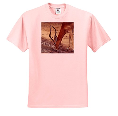 Price comparison product image 3dRose Sven Herkenrath Animal - Elegant Impala Drinking Water Side View Soft Filter - T-Shirts - Youth Light-Pink-T-Shirt Med(10-12) (TS_275870_45)