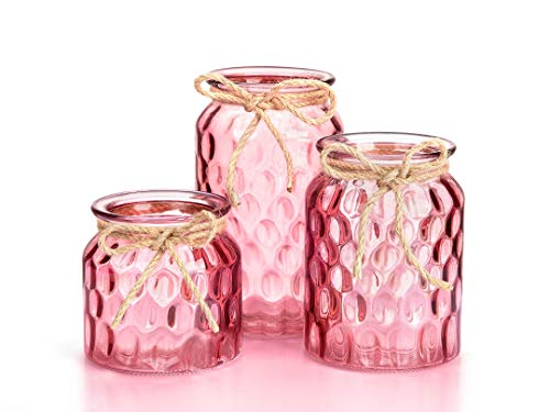 Opps Glass Bud Vases Candlestick Holders Set with Modern Oval Pattern Design – Set of 3, ()