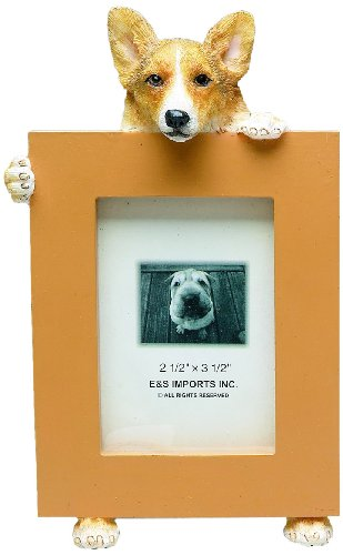 Welsh Corgi Picture Frame Holds Your Favorite 2.5 by 3.5 Inch Photo, Hand Painted Realistic Looking Welsh Corgi Stands 6 Inches Tall Holding Beautifully Crafted Frame, Unique and Special Welsh Corgi Gifts for Welsh Corgi Owners