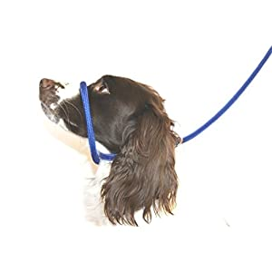 Dog & Field Figure 8 Anti Pull Leash/Halter/Head Collar- One Size Fits All - Super Soft Braided Nylon - Fitting Instructions Included - Comfortable, Kind, Supple, Secure No More Pulling! 1