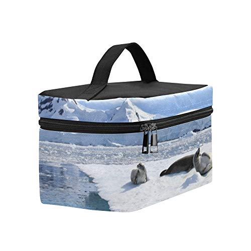 Crabeater Seal - Crabeater Seals On Ice Floe Antarctic Lunch Box Tote Bag Lunch Holder Insulated Lunch Cooler Bag For Women/men/picnic/boating/beach/fishing/school/work