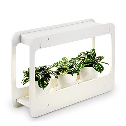 Plant Grow LED Light Kit, Indoor Herb Garden with Timer Function, 24V Low Voltage, Indoor Harvest Elite for Gourmet or Plant Enthusiasts, Rosemary, Lavender, Seed, Pod Ornamental Gift