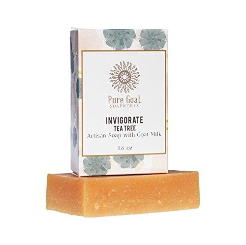 Pure Goat Soapworks Invigorate Tea Tree Goat Milk Soap ()