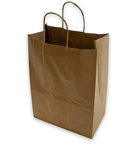 2dayShip Paper Retail Gift Bags with Rope Handles 10 x 5 x 13 inches, 50 Count (Retail Gift Bags)