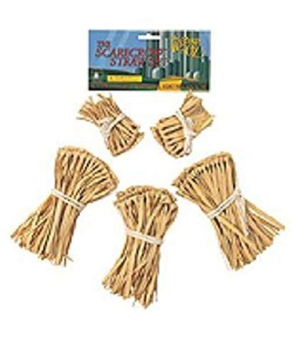 Homemade Halloween Costumes For Large Dogs (Wizard of Oz Straw Kit Costume)