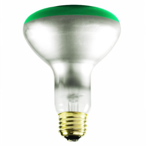 Colored Flood Light Bulbs Outdoor