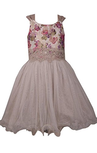 Bonnie Jean Sleeveless Ivory Dress with Pink Floral Bodice and Cascading Chiffon Skirt 5Y