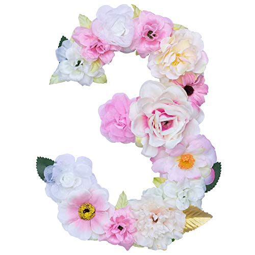 Artificial Ornaments Floral Letter / Number Pink Theme,8.3x5.9x0.6in, Hang on Front Door and Wall, Home Decoration, Suit For Baby Shower, Anniversary, Birthday, Baby Room, Wall Ornament (1 Nunmber, 3)