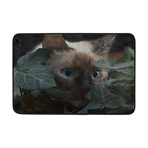 RH Studio Carpet Cat Burmese Blue Eyes Hidden Doormat Indoor Outdoor Entrance Floor Mat Bathroom 23.6 X 15.7 Inch