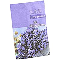 32PCS Lavender Air Purifying Bags Help Sleep Mildew Deodorizer Odor Eliminator