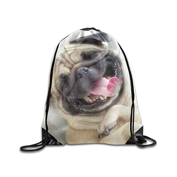 LINGJIE Lightweight Foldable Large Capacity Drawstring Gym Backpack bag Cute Pug Dog Waterproof Bunch Backpack For Men… 1 spesavip