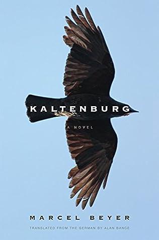 book cover of Kaltenburg