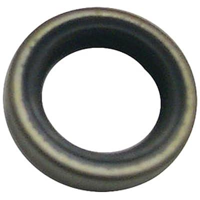 Oil Seal: Automotive
