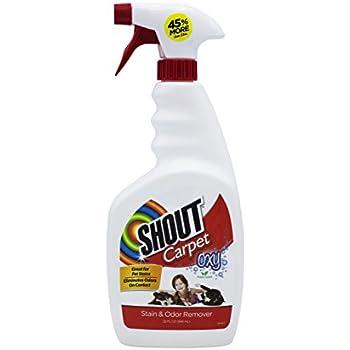 Amazon Com Shout Carpet Spray Best Pet Stain Remover