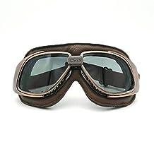 Heinmo Cool Motocross Riding sport Detachabl glasses Goggles Motorcycle Helmets goggles (Smoke Lens Cooper Frame Brown Padding)