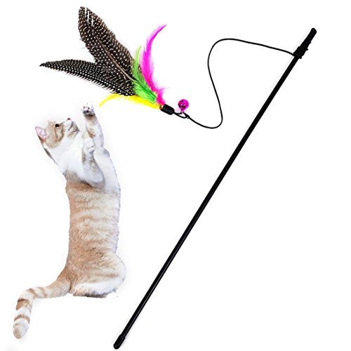 LtrottedJ Kitten Cat Teaser Interactive Toy, Rod with Bell and Feather