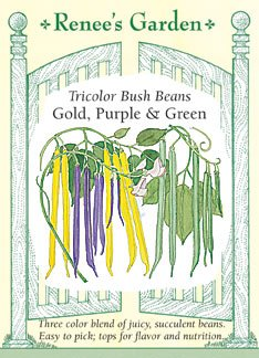 Bean - Bush Tricolor Seeds 80 seeds