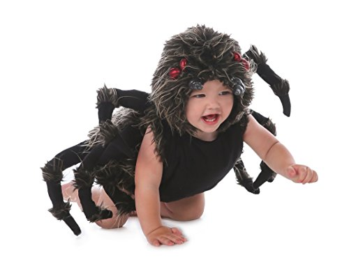 Princess Paradise Baby Boy's Talan The Trantula Costume, Black, (Scary Baby Costumes For Halloween)