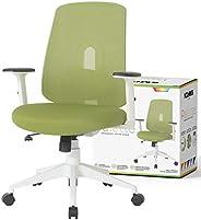 NOUHAUS Palette Ergonomic Office Chair Comfortable Swivel Computer Desk Chair, Lumbar Adjust Rolling Chair. (G