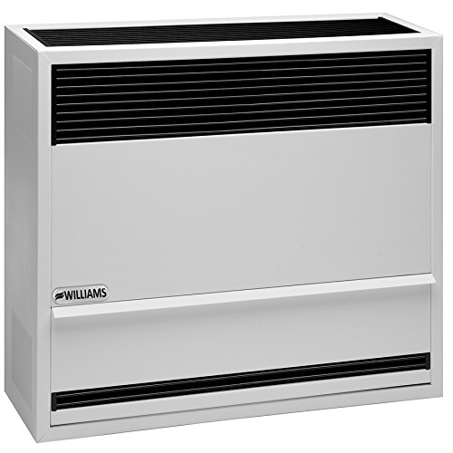 williams-furnace-company-3003822-natural-gas-direct-vent-gravity-furnace