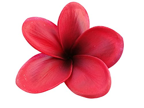 Bunch-of-10-PU-Real-Touch-Lifelike-Artificial-Plumeria-Frangipani-Flower-Bouquets-Wedding-Home-Party-Decoration-Mothers-Day-Memorial-Day-Decoration-Gift-Wine-Red