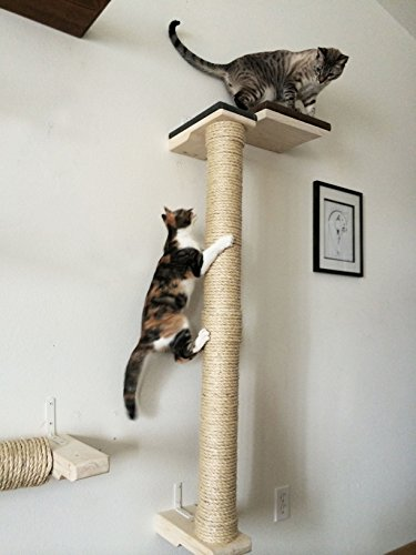 CatastrophiCreations Vertical Sisal Pole Wall Mounted Handcrafted Cat Tree Scratcher, English Chestnut