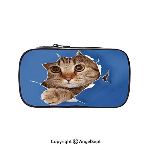 (Pencil Holder with Handle Strap Handy Colored,Cute Kitten in Paper Hole Paws Playful Scottish Cat Adorable Pet Picture Decorative Violet Blue Umber 5.1inches,Large Capacity Students)