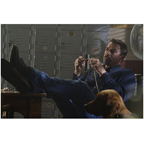 (Jesse Stone: Death in Paradise (2006) 8 inch x 10 inch Photo Tom Selleck Playing w/Rope Next to Dog kn)