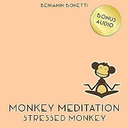 Stressed Monkey Meditation – Meditation For Reducing Stress