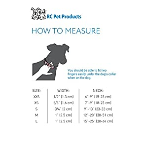 RC Pet Products 1-Inch Adjustable Clip Collar, Medium, Trendy Mehndi