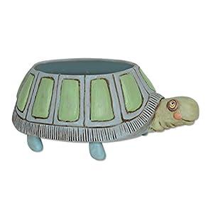 Allen Designs Resin Planters Allen Designs Myrtle Turtle Indoor/Outdoor Planter 6.5 X 4 X 9.5 Inches Multicolored