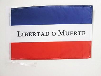 AZ FLAG Bandera de los Treinta Y Tres ORIENTALES DE Uruguay 45x30cm - BANDERINA Libertad O