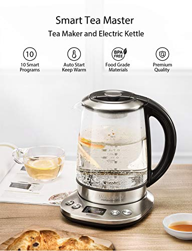 Willsence Electric Kettle, Electric Tea Kettle Stainless Steel Glass Boiler Hot Water Tea Heater with Temperature Control LCD Display, Removable Tea Infuser, 1.7 L, 1200W