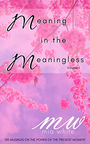 Meaning In The Meaningless: 100 Musings on the Power of the