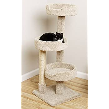 Window Size Kitty Tree Cat Tower With 3 Large Beds Beige Carpet