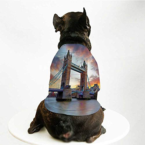YOLIYANA London Cute Pet Suit,Historic Old Tower Bridge London British Kingdom Skyline Ancient Cultural Monuments Decorative for Small Medium Large Size Dogs Cats,L]()