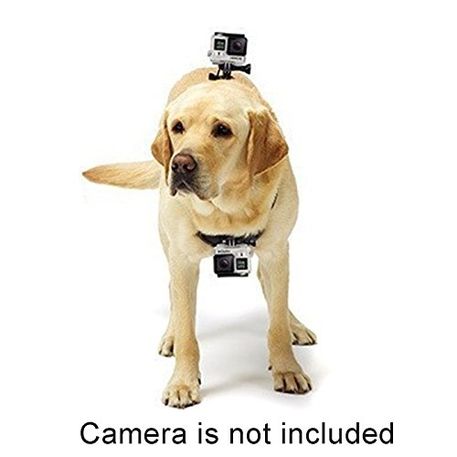 Alfie Pet by Petoga Couture - Enfys GoPro Hero 4/3+/3/2/1 Harness for Pet by Alfie (Image #2)