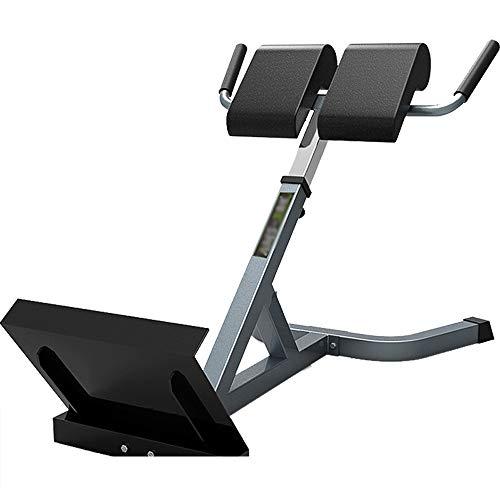 DWhui Taburete Romano Entrenador Equipo de Fitness de Interior Equipos de Cintura Equipo de Fitness, Banco de Entrenamiento...