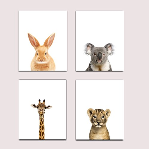 Baby Nursery Decor Wall Prints - Set of 4 Safari Prints - Baby Animal Portraits Bunny, Koala, Giraffe, Cub Lion Nursery Art, Nursery Decor, Baby Kids Room, Wall Art, 8x10, UNFRAMED (Baby Nursery Wall Art)