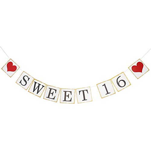 Sweet 16 Birthday Banner 16th Birthday Party Decorations Anniversary Celebration (Black And White Sweet 16)