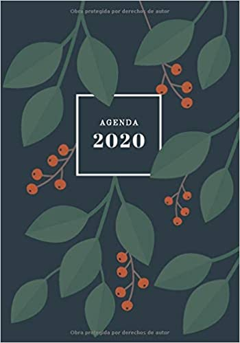 Amazon.com: Agenda 2020: Agenda Semanal Vertical   Tamaño ...