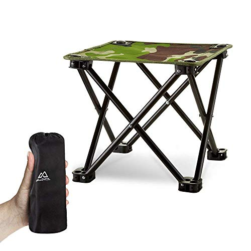 Folding Camping Stool, Mini Folding Stool Portable, Mini Portable Chair for Beach, Picnic Party, Camping, Barbecue, Fishing, Hiking, 600D Oxford Cloth with Portable Bag,12